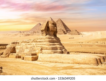 Gorgeous Sphinx in front of the Giza Pyramids, Egypt
