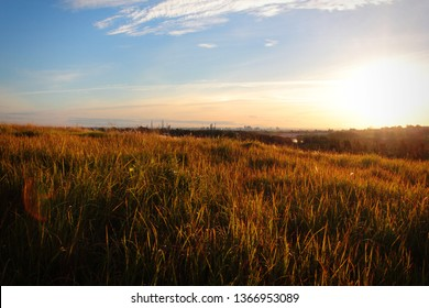 Gorgeous Sunset Over a Grassy Rolling Hill Autumn Long Grass Dramatic Heavenly Golden Hues Outdoor