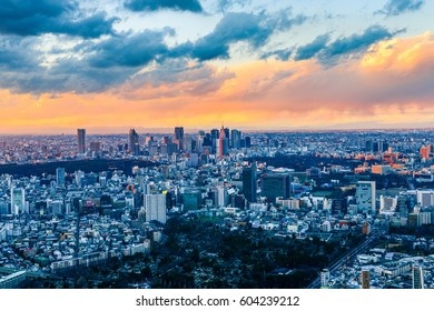 Gorgeous sunset view of densely populated Tokyo Metropolis
