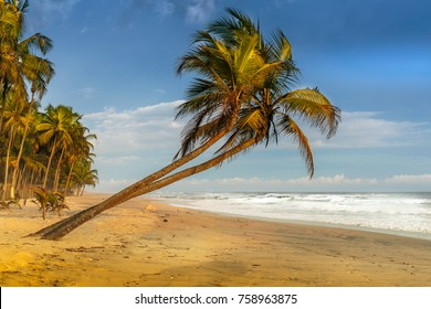 Gorgeous tropical beach in Ivory Coast