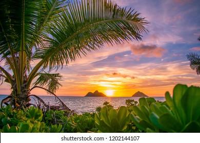 A gorgeous tropical sunrise over Lanikai Beach in Kailua, Oahu, Hawaii