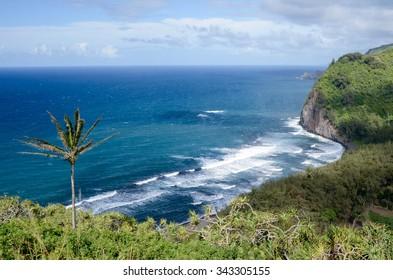 Gorgeous view overlooking Pololu Valley Beach, Big Island, Hawaii, USA