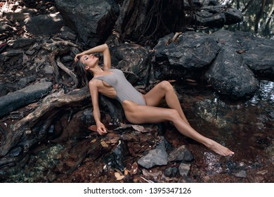 Gorges Woman in swimsuit on the roots of a tree in the forest. Beautiful graceful lady with an old mighty tree.