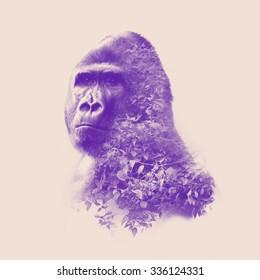gorilla portrait with double exposure effect