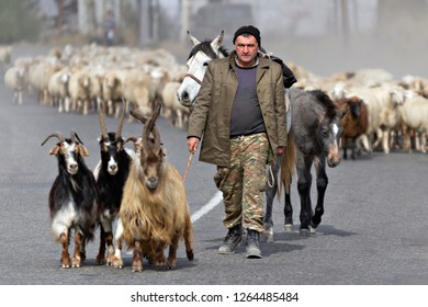 GORIS, ARMENIA - SEPTEMBER 27, 2017: Armenian shepherd with his herd of sheep and goats, in Goris, Armenia.