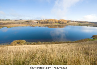 Gorodischenskoe lake in the golden autumn. Izborsk, Russia