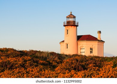 Gorse and morning light decorating the Coquille River Lighthouse in Bandon, Oregon.