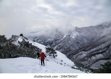 Goseong-gun, Gangwon-do, South Korea - March 07, 2021: Back view of hikers walking on snow covered trail with pine trees on Seongindae Peak of Seoraksan Mountain against sea of cloud