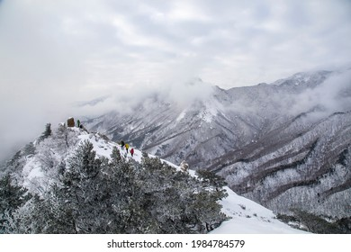 Goseong-gun, Gangwon-do, South Korea - March 07, 2021: Hikers are walking on snow covered trail with pine trees on Seongindae Peak of Seoraksan Mountain against sea of cloud