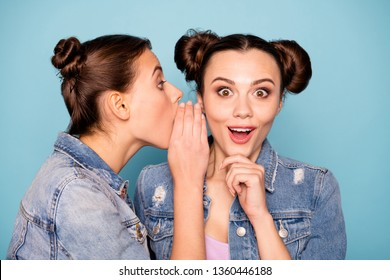 Gossip ladies. Close up photo of attractive cute millennial friends sharing mystery saying really touching chin hearing news about discounts dressed in denim shirts isolated on blue background