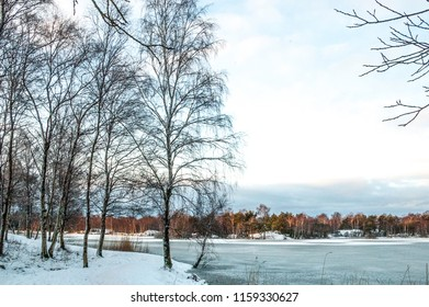 Gothenburg's Parks in Winter