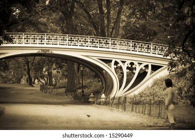 Gothic Bridge in Central Park, New York.