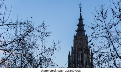 Gothic church tower under a late winter blue sky and tree with dried fruit filling the image.