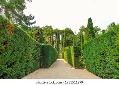 Gothic garden in Spain.