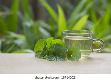 Bitter Kola Images, Stock Photos & Vectors | Shutterstock