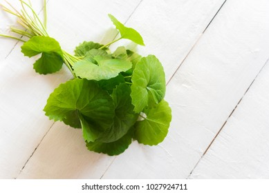 gotu kola juice, asiatic pennywort, centella asiatica, ayurveda herbal drink on wood white