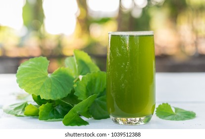 Gotu kola juice, Centella asiatica drink, Asiatic Pennywort on wood background