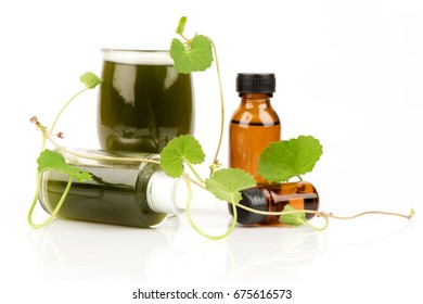 Gotu kola juice and green leaves.(Extracts)
