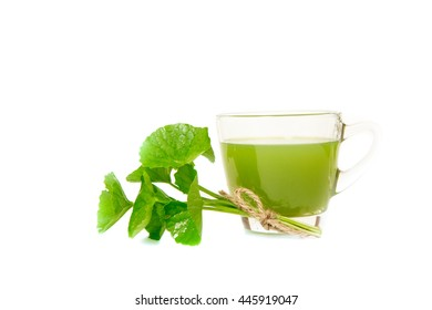 Gotu kola's leafs drink on white backgroun