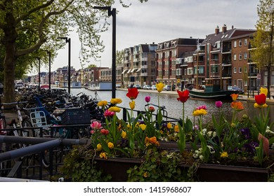 Gouda, Holland, Netherlands, April 23, 2019, bicycles parked near a bridge in a street in Gouda old town. Flowers (tulips) on the foreground in a flowerbed