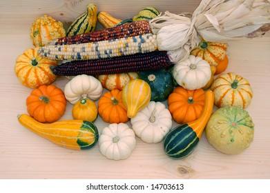 gourds, corn  and mini pumpkin