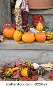 Gourds, pumpkins, and corn are a clear sign of the autumn season.