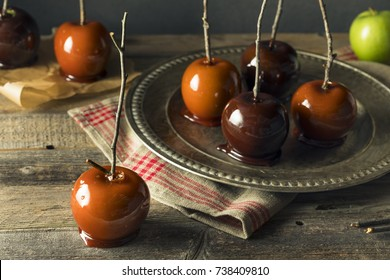 Gourmet Sweet Fancy Candy Apples for Halloween