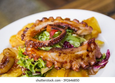 Gourmet tasty colorful octopus salad