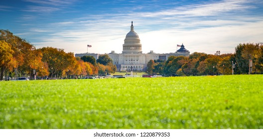 Goverment Capitol building in Washington DC with autumn park and green floor and blue sky , USA, United States of America