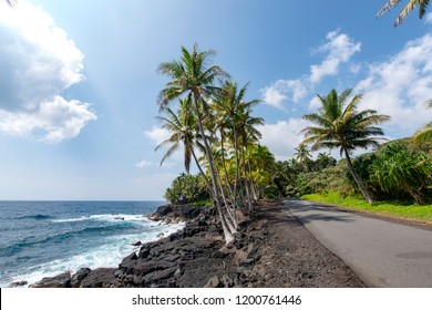 Government Beach Road,Pahoa,Big Island Hawaii