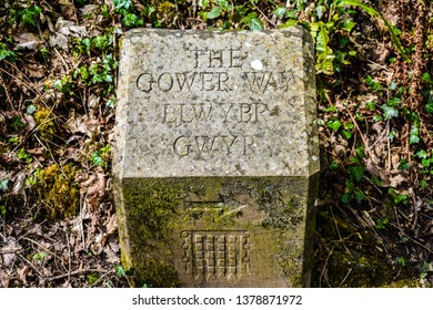Gower way stone on nature trail