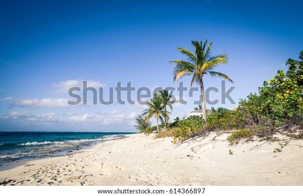 bahía de gracia Islas Turcas y Caicos