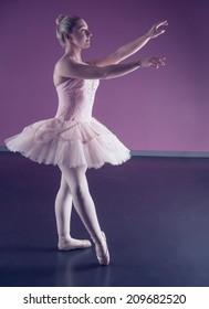 Graceful ballerina standing in pink tutu in the ballet studio
