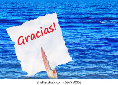 Gracias! ( Thanks ) red Spanish Word  on white torn piece of paper in crab claw on blue sea background, close up