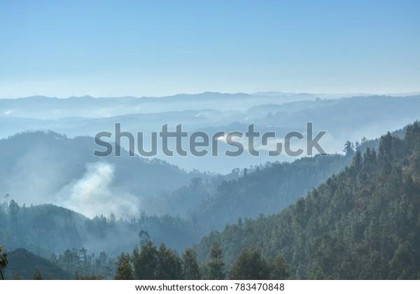 gradient rural landscape