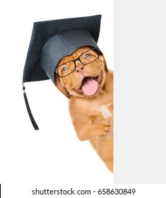 Graduated dog with glasses peeking above white banner. isolated on white background