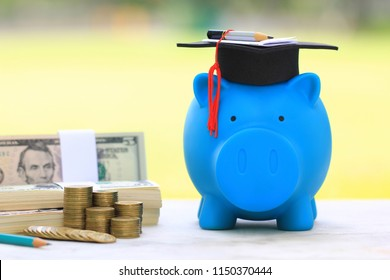 Graduation hat on blue piggy bank with stack of coins money and banknote on natural green background, Saving money for education concept