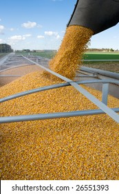 Grain being loaded into a truck trailer.