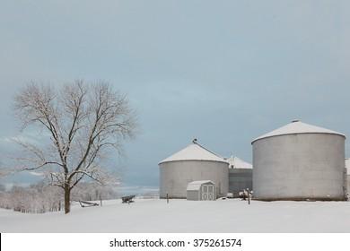 Grain bins after a winter storm