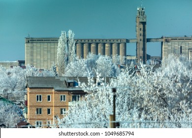 Grain elevator and frosty trees