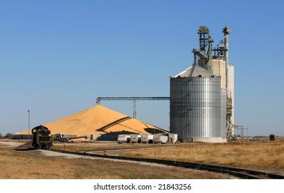 Grain elevator with surplus corn pile