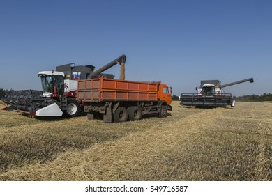 Grain harvesting campaign. Mechanized harvesting wheat harvesters.