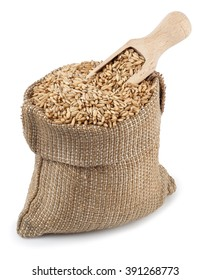 grain of oat or wheat in burlap bag with wooden scoop isolated on white background top view