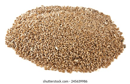 grain on a white background