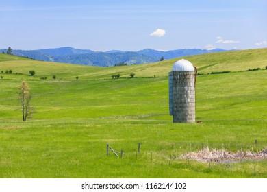 A grain silo stands tall in a green meadow near Harrison, Idaho.