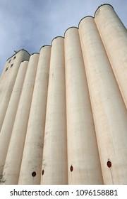 Grain silos of a flour mill