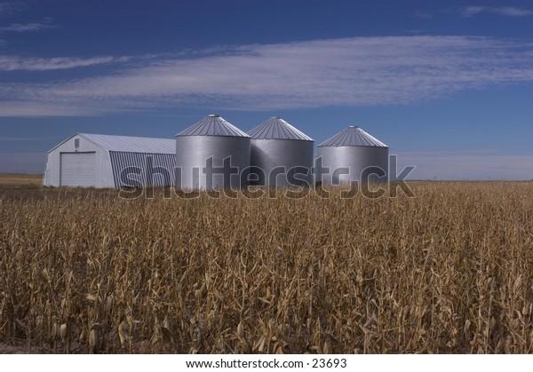 Grain storage bins and corn field, Nebraska