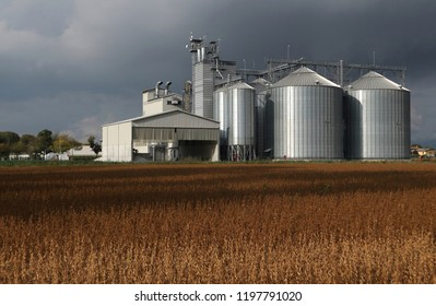 Grain storage silos system  behind a brown soybean field and under a dark cloudy sky in an autumn day