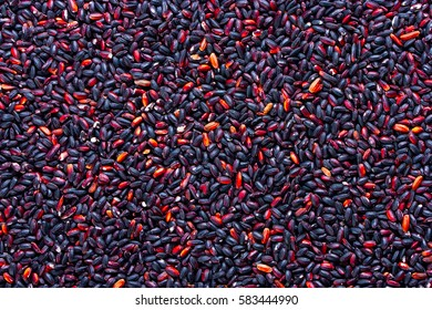 The grains of black rice background