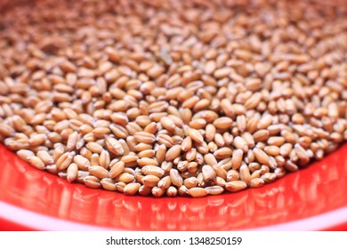 grains of wheat pouring out of container